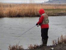 12 советов по ловле крупных окуней на спиннинг