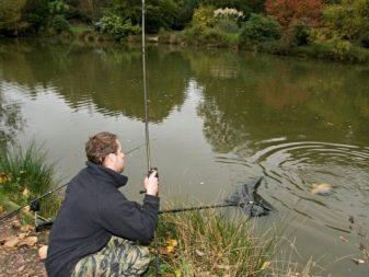 Руководство по выбору приманки для ловли форели