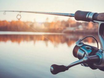 Какой крючок выбрать для ловли судака