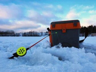 Ловля голавля зимой – тактика, снасти, приманки