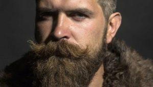 Всё о бородах: от выбора формы до ухода