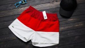 Выбираем мужские шорты Lacoste