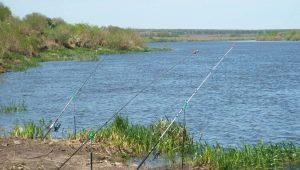 Рыбалка в Липецке и Липецкой области