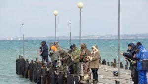 Все, что нужно знать о рыбалке в Анапе и ее окрестностях