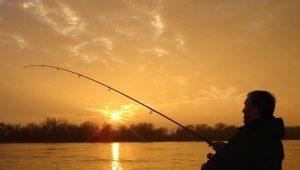 Все о рыбалке в Брянске и Брянской области