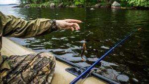 Все о рыбалке в Краснодаре и Краснодарском крае