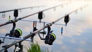 Как ловить рыбу на удочку?