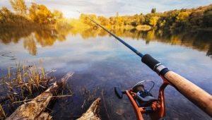 Рыбалка в Караганде и Карагандинской области