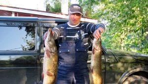 Все о рыбалке в Санкт-Петербурге и Ленинградской области