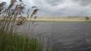 Все о влиянии ветра на рыбалке