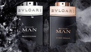 Описание мужской парфюмерии Bvlgari