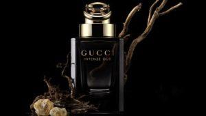Описание мужской парфюмерии Gucci