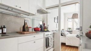 Как обустроить кухню-спальню?