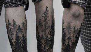 Какими бывают мужские тату в виде леса и где их размещать?