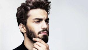 Все о бороде